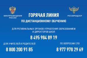 Минпросвещения России 8 800 20 091 85